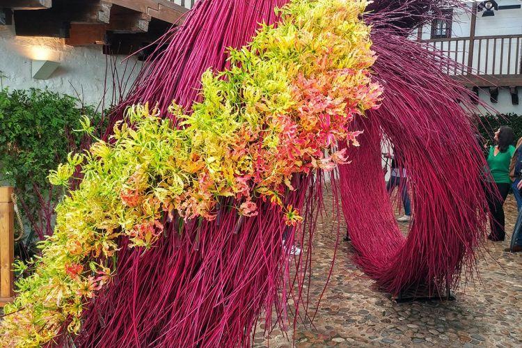 FLORA-Festival-Internacional-de-las-Flores-Córdoba-Hotel-Caireles